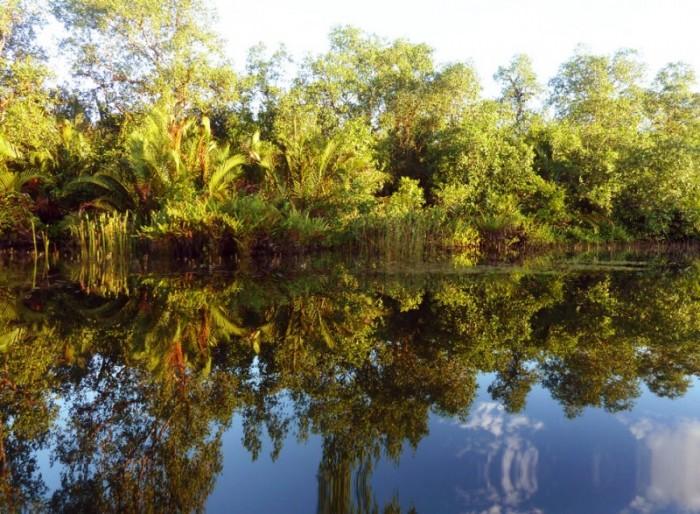Preak Piphot fleuve