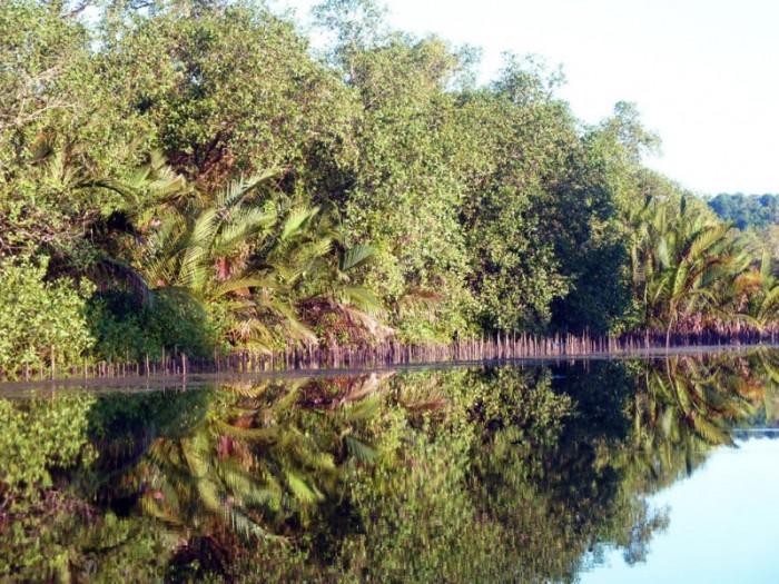 Preak Piphot cambodge