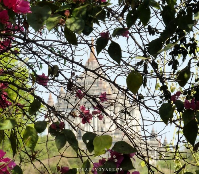 Un des Temples de Bagan au Myanmar