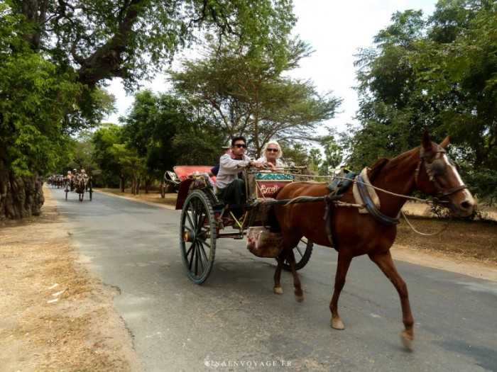 Calèche de Bagan Myanmar
