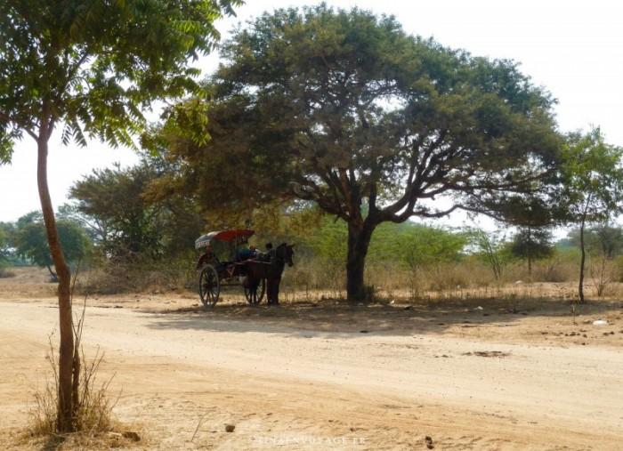 Calèche de Bagan au Myanmar