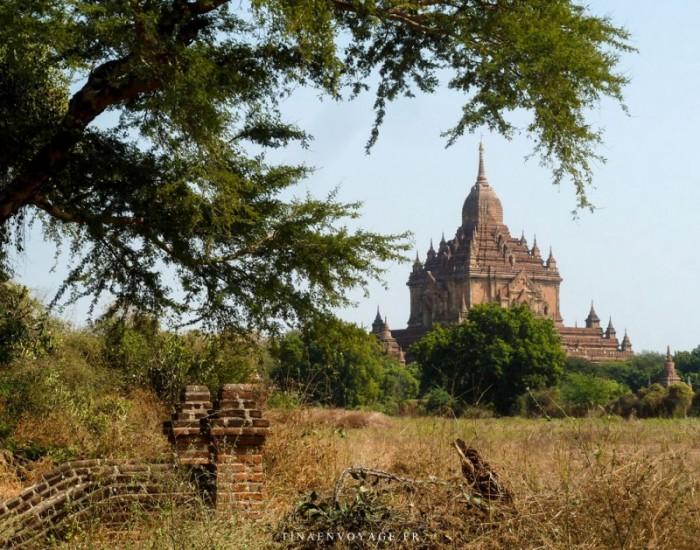 Un des nombreux temple de Bagan au Myanmar